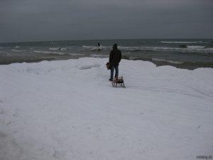 Schlittenfahrt am Strand