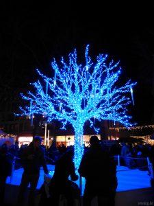Weihnachtsbaumalternative