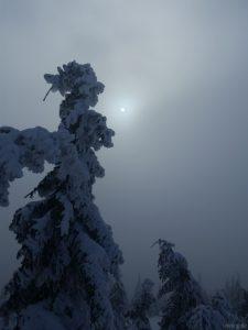 Sonne Lyse Hora