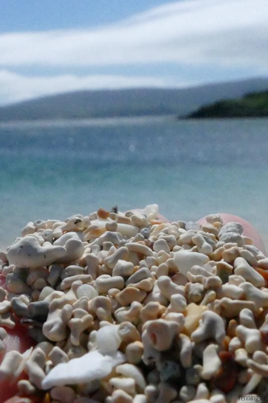 Coral Beach